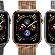 apple watch seri 4 40mm internasional