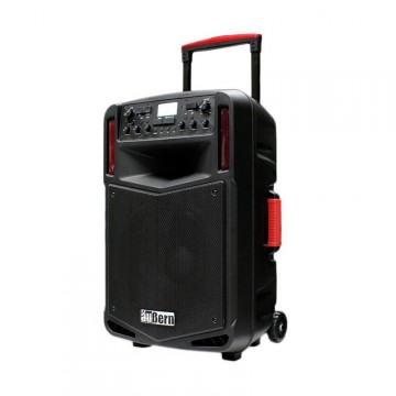 Aubern BE-12CX Proffesional Portable Audio System